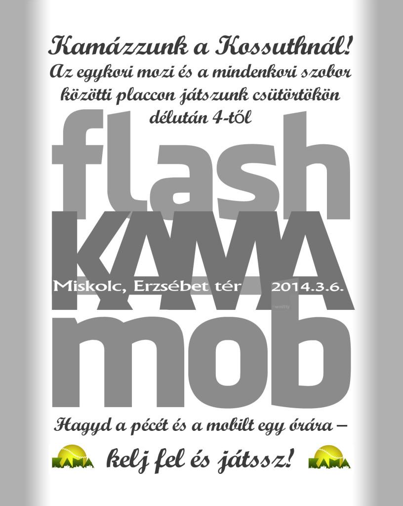 flashKAMAmob-FF